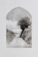 Laurie_Steen_devon hedge drawing 16-17