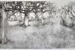 Winter Drawing II, 03-17
