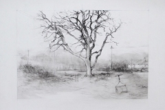 sweetly scented tree surrounding me,,, home drawing 09-15