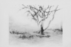 as I remember it, home drawing 15-14 Laurie_Steen – Version 2