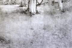 (detail 2) Winter Drawing II, 03-17
