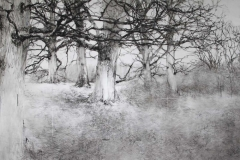 (detail 1) Winter drawing II, 03-17