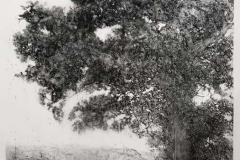 the air streams with possibility, Drawing 01-19 (photo thru art glass)