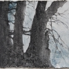 Laurie-Steen_elegy drawing 46-11