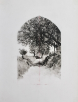 Laurie_Steen_a cathedral of trees, drawing 02-17