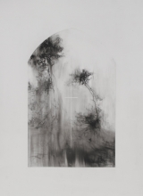 Laurie_Steen_Pines II, drawing 8-17