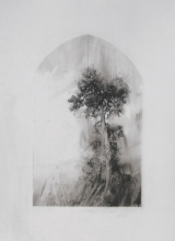 Laurie_Steen_Pines I, drawing 9-17