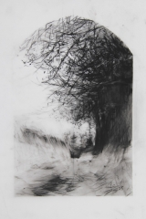 Laurie_Steen_drawing 03-15