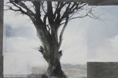 Laurie-Steen_Landstill, drawing 18-12 (Catriona's tree).jpeg