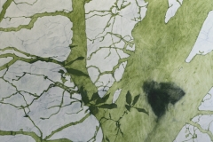 Laurie_Steen_memory-of-green-drawing-19-07