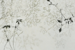 Laurie_Steen_observation drawing 04-06
