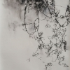 Laurie_Steen_Drawing 35-07