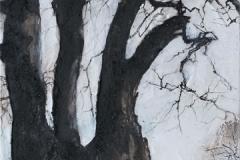 beech-fursdon-drawing-10-09