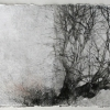 Laurie-Steen_study-for-marsh-farm-1-drawing 13-09.jpeg