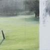 Laurie-Steen_Familiar Field V, 40-11.jpeg