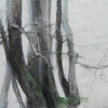 Laurie-Steen_portrait-of-a-beech-hedge-I-38-10.jpeg